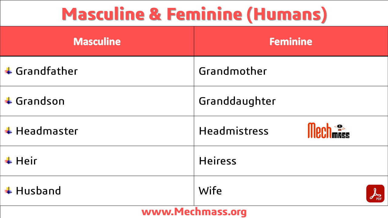 masculine and feminine list in english