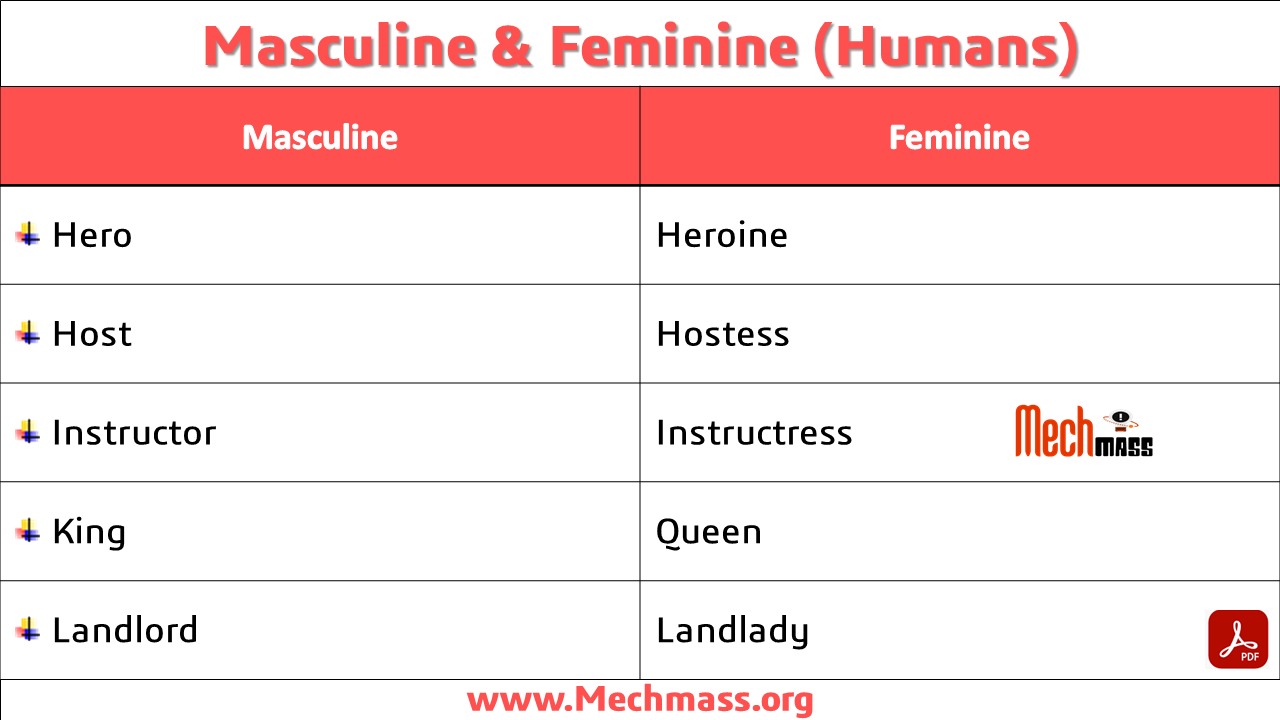 masculine and feminine in english