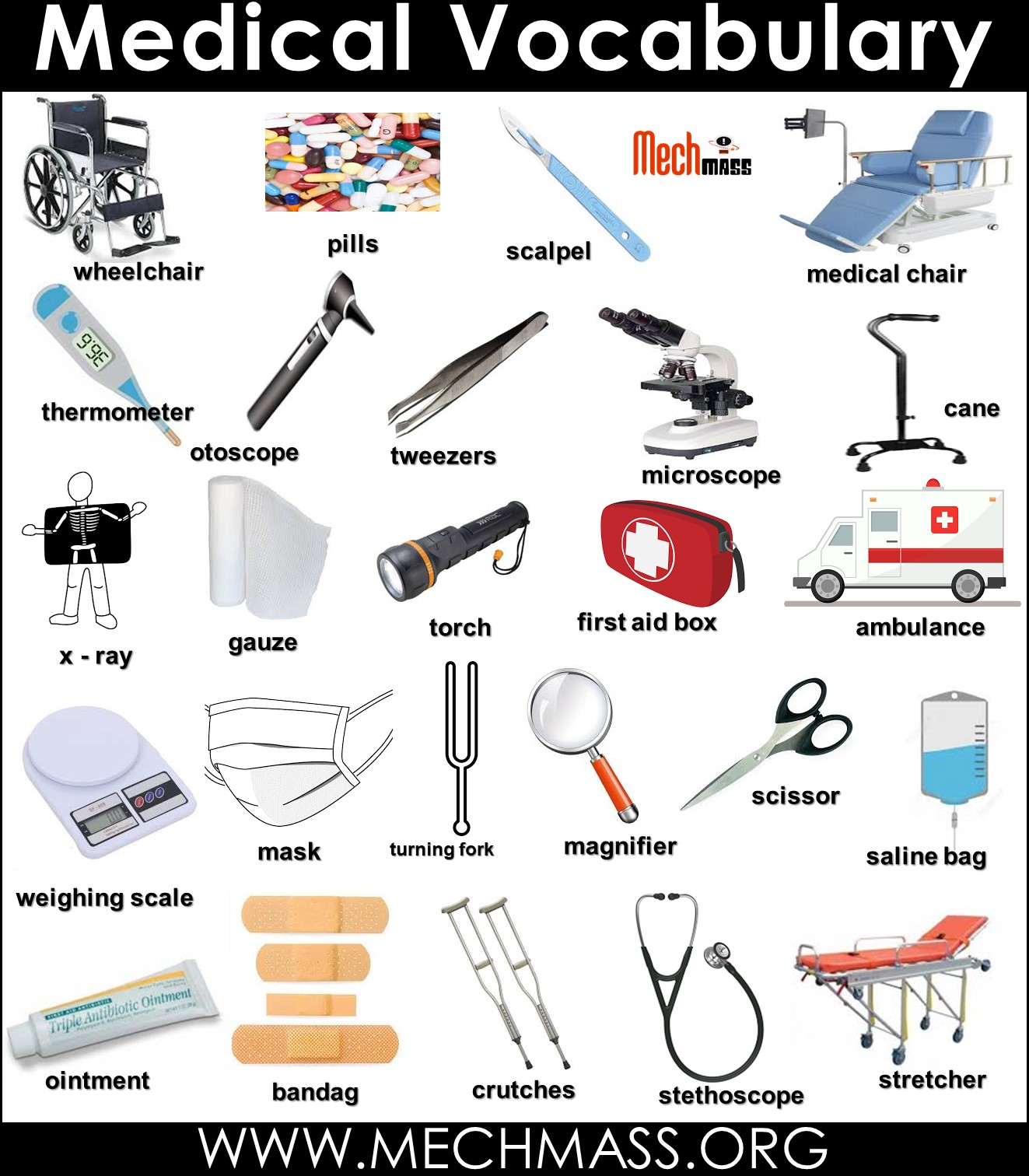 medical vocabulary words with pictures