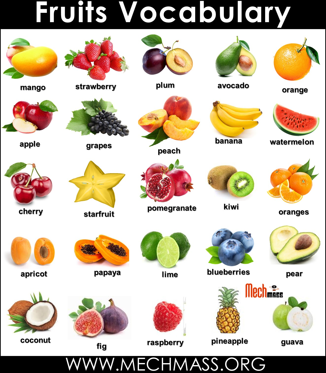 fruits vocabulary words with pictures