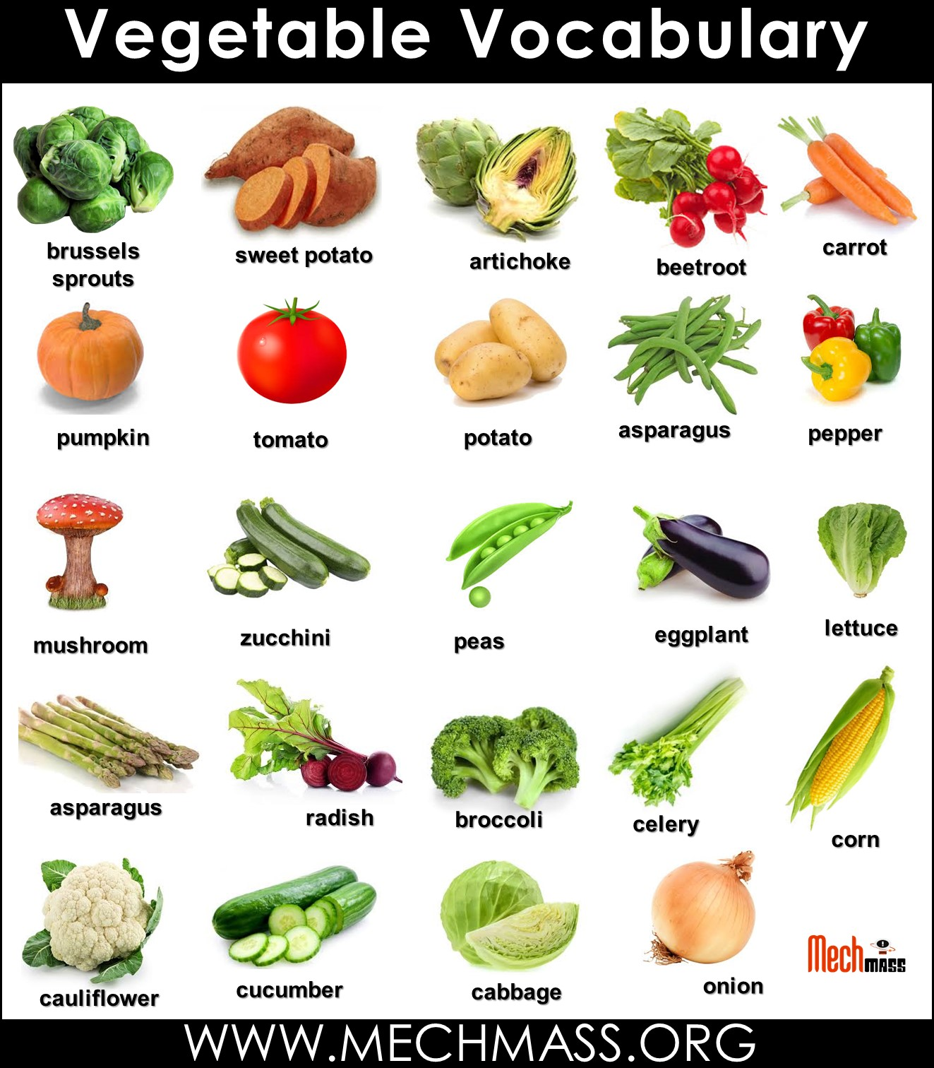 vegetables vocabulary words with pictures