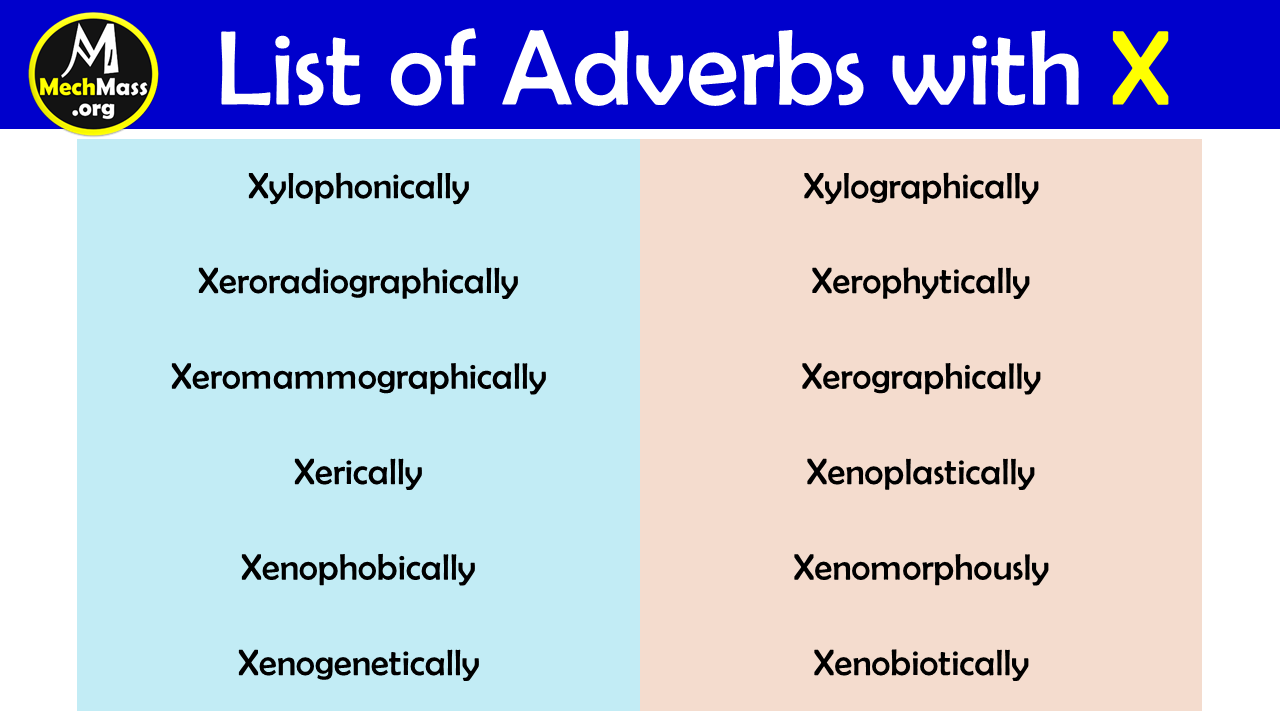 adverbs that start with x