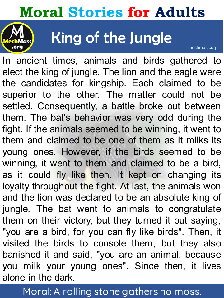 king of the jungle story